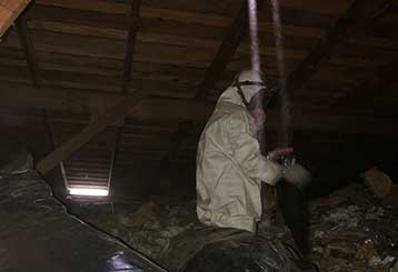 Attic Cleaning in Orange | Attic Cleaning Anaheim