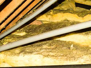 Insulation Removal | Attic Cleaning Anaheim, CA